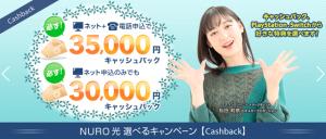 アウンカンパニーのNURO光キャンペーンページ