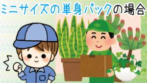 ミニサイズの単身パックでも観葉植物を運んでくれる?