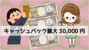 6.1 キャッシュバック最大30,000円